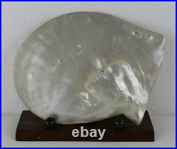 Antique STUNNING QUALITY CHINESE CARVED MOTHER OF PEARL SHELL & STAND